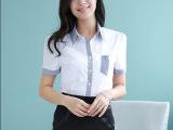 职业女装套装 2015年韩版夏装新款OL女裙套装 批发时尚短袖套