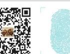 扬州专注720全景漫游制作