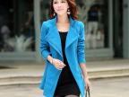 2014新款OL通勤毛呢大衣 女式立领修身型外套 大码女装 厂家批发