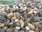 贵州鹅卵石批发市场贵州铜仁地区鹅卵石销售