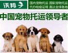 上海宠物物流价格表托运一只狗要多少钱