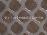 直销供应 聚丙烯大眼塑料平网 养殖塑料平网