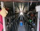 鸡厂出租-滑县800平米其他8888元/月
