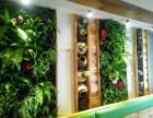 鲜花绿植 植物墙 仿真植物墙 假花 墙体绿化