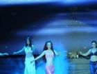 专业的舞蹈演出团队,演出画面优美性感,观赏性高
