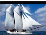 普丽玛 框架银幕 画框幕 84寸 PVC 正投