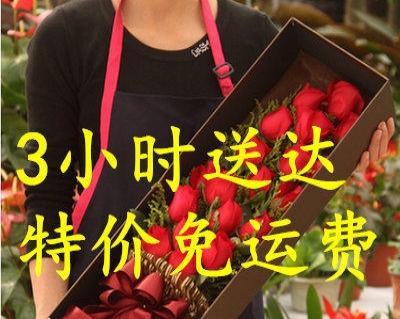 宿州砀山县花店网上花店蛋糕店鲜花速递快递预订网上花