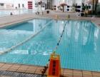 黑大游泳馆招收学员