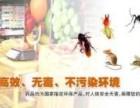杀虫公司白蚁防治,除虫灭老鼠,酒店杀蟑螂,杀臭虫
