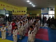 北京市专业跆拳道特技表演防身培训就来龍圣搏击俱乐部