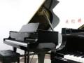 大音琴行 雅马哈二手钢琴 卡哇伊二手钢琴 日本原装二手钢琴