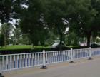 四川道路锌钢护栏-四川道路隔离护栏-锌钢道路栅栏
