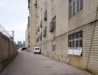 出租江汉区经济开发区 优质厂房出租 ·