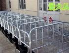 定位栏母猪保胎围栏加重大架尺寸定做厂家