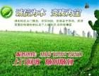 专业进口音响回收 武汉音箱回收 武汉KTV设备回收