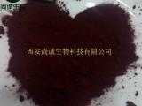 天然神经酸90% 元宝枫籽油提取物 尚诚生物