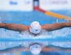 【张三丰游泳健身中心】蝶泳的呼吸与动作的配合