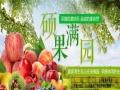 东港市夏家湾生态山庄 大型采摘节活动开始了