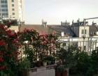 出租正大公寓附近房子,5楼两室一厅,简装750元一个月市中心