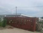 玮六路东段酒厂东边 厂房 50000平米