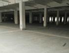 标准厂房2楼层高5米集装箱可进工作日随时看房