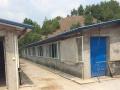 花林寺镇三孔村 厂房 养殖场3000平米