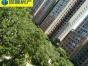东海湾太古二期 两房朝南 精装高层 即可入住