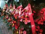 南宁塞纳维拉花园花店 定制花车 开业花篮出售绿植塞纳维拉花园