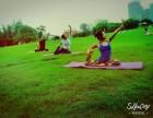 在大连学习最专业的瑜伽教练培训课程去哪里