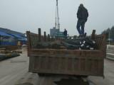 热轧螺纹钢和钢筋 热销建筑钢筋 北京钢材直发