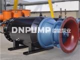卧式潜水轴流泵全套设备生产厂家