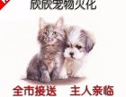 普陀区华师大附近宠物火化 宠物殡葬 宠物尸体无害化处理
