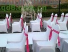 淄博大量白色宴会椅 红色贵宾椅供应出租