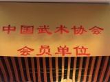 北京散打培训 泰拳培训 跆拳道培训 武术培训