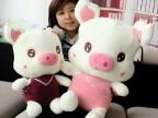 一件代发 可爱项链猪 情侣三顺猪 创意毛绒玩具 生日礼物 批发