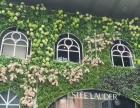 解忧仿真植物墙,用于门头、店铺装饰、家装、背景墙等