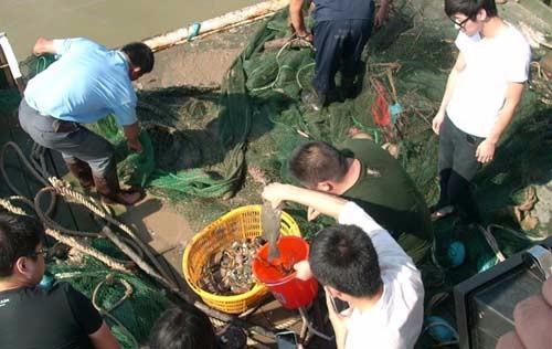 挑一个天气晴好的日子,带上家人 朋友,温州乐清包船捕鱼