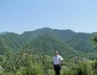 衢州看风水大师、看阴宅坟墓风水、杨公风水培训网