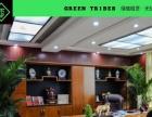 格林部落 专业花卉绿植物租赁租摆 专业设计定期养护