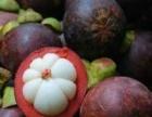 天天果鲜进口水果