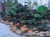 假山设计施工及鱼池过滤系统工程