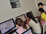 天府五街华府大道附近会计 办公 平面设计室内设计培训学历提升