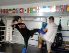 少儿成人散打泰拳武术培训!