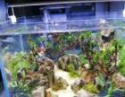 鱼缸水草缸造景鱼缸特卖