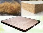 如何防止床垫生虫找准源头很重要欢迎来电