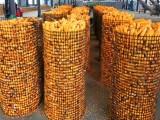 樂達新型養殖網養雞養鴨圈地圍欄圈玉米網