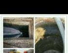 宝鸡管道疏通、高压清洗,化粪池、污水池、泥浆 等吸污清运