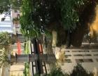 雨花亭 凯德广场 沃尔玛 出租家庭旅馆 单人间