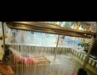 嘉禾温泉水世界、亚布力温泉、雁鸣湖温泉。