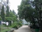 二号线云锦路站 欧尚附近 低楼层 采光好 精装两房